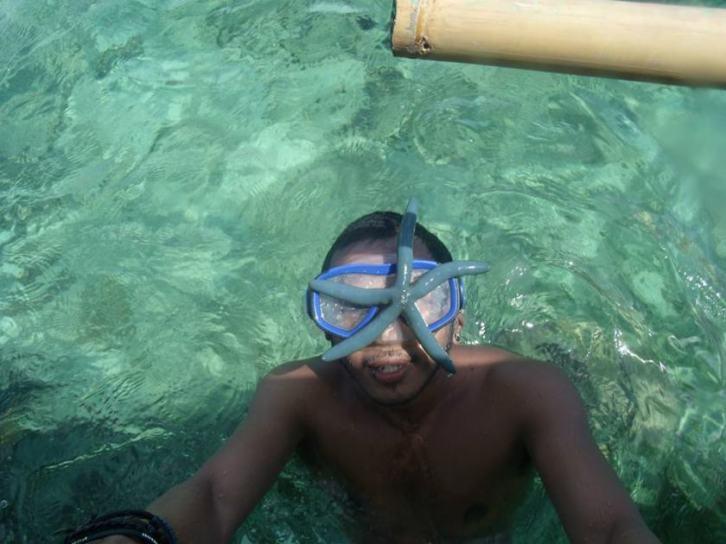 starfish cagbalete
